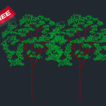 Tree Cad Block Free Download