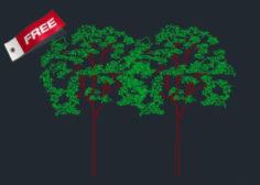 http://www.dwgnet.com/wp-content/uploads/2016/01/Tree-Cad-Blocks-free-download-300x210-1-236x168.jpg