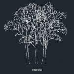 Tree CAD Block 201