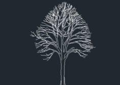 http://www.dwgnet.com/wp-content/uploads/2016/06/tree203-625x304-1-236x168.jpg