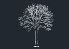 http://www.dwgnet.com/wp-content/uploads/2016/06/tree204-625x304-1-236x168.jpg